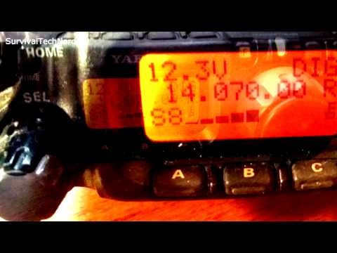Howto Setup WolphiLink Radio Interface for PSK SSTV WEFAX  Android | Yaesu FT-817 Bugout Radio